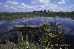 Tous les étangs du Parc naturel régional de la Brenne sont artificiels. Les plus anciens, créés depuis de nombreux siècles, ont aujourd'hui un aspect de nature sauvage, et son accueilllants pour de nombreux oiseaux.