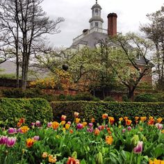 The beautfy of the gardens throughout Colonial Williamsburg make for a wonderful visit throughout the year!  #ColonialWilliamsburg #VisitWilliamsburg www.VisitWilliamsburg.com