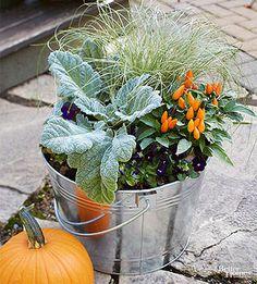 Fall Container-Garden Recipes