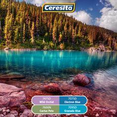 #CeresitaCL #PinturasCeresita #Color #Mundo #Creatividad #Pintura #Tendencia…