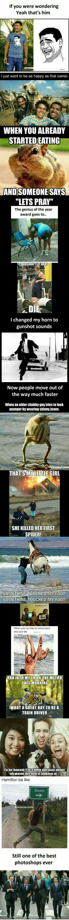 Top 15 Funny Memes