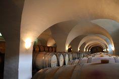 Wine Estate Winkler-Hermaden - Kapfenstein - Vinyards of Southern Styria - Austria Salzburg, Austria, This Is Us, Southern, Castle, Wine, Mansions, Building, Manor Houses