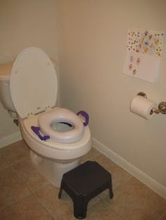 Toilet Training for Toddlers