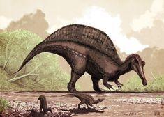 Spinosaurus. Mark Witton