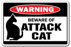 Beware of Attack Cat Warning Sign Cats Signs Gag Gift Guard Feline Security Joke for sale online Cat Signs, Funny Signs, Animal Throws, Novelty Signs, Plastic Signs, Cat Health, Health Tips, Cat People, Warning Signs