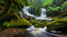 Half Full by Dylan Toh  & Marianne Lim - Photo 153353409 - 500px