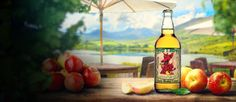 Gwynt Y Ddraig – Refreshingly Welsh award winning ciders and perries