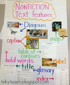 Nonfiction Text Features- anchor chart and graphic organizer