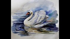 Water color painting (swan) - YouTube