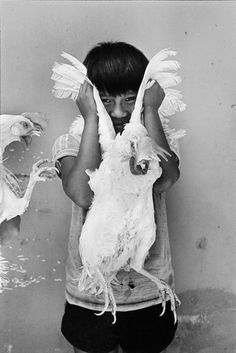 Stephania Taladrid writes about the photographer Graciela Iturbide's images capturing the daily lives, the mores, and the remarkable diversity of Mexican people. Free Photography, Photography Projects, Mexican People, Mexico Culture, San Francisco Museums, Philadelphia Museum Of Art, Diego Rivera, Great Photographers, Documentary Photography