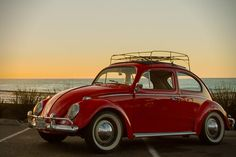 ZelectricBugs- Vintage VW Beetles Made Electric 3