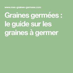 Graines germées : le guide sur les graines à germer