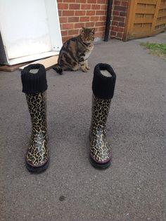 Shoe idea 4