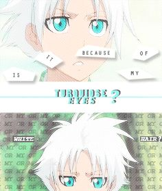 24 Best toshiro hitsugaya images in 2014 | Bleach anime