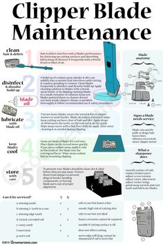 Clipper Blade Maintenance -- taking care of clipper blades infographic for pet groomers Dog Grooming Styles, Dog Grooming Clippers, Dog Grooming Shop, Dog Grooming Salons, Dog Grooming Business, Dog Salon, Pet Clinic, Dog Care Tips, Yorkies