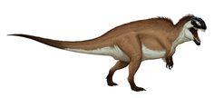 Apsaravis • Posts Tagged 'Carcharodontosauridae'