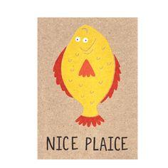 Nice Plaice www.toowrappedup.com