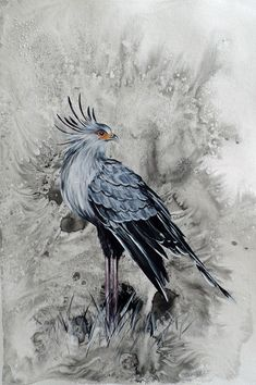 Available to buy online from StateoftheART, Secretary Bird by Liffey Joy, original painting on paper size 42 x unframed. South African Birds, Original Paintings, Bird Paintings, Bird Art, Figurative Art, Online Art Gallery, Paper Art, Creatures, Joy