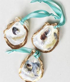 Items Similar To Oyster Shell Ornament Set Aqua Ribbon Seashell Christmas Beach Coastal Nautical Holiday Decor