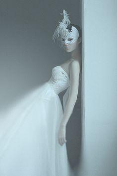 white Swan by Алина Куликова, via 500px