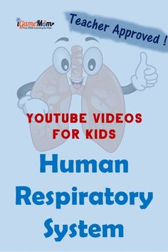 Teacher approved science videos on YouTube teaching students Respiratory System: nose, larynx, trachea, bronchi, and lung; for kids from preschool to high school. Perfect for science class and homeschool, human body unit, physiology. Elementary Science Experiments, Science Videos, Science Activities For Kids, Teaching Science, Science Fair, Steam Activities, Life Science, Summer Activities, Student Teaching