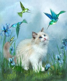 Such a sweet Ragdoll kitty Too cute for words Sitting so pretty Watching hummingbirds.  Ragdoll Kitty & Hummingbirds prose by Carol Cavalaris  This painting of a curious Ragdoll kitty sitting in a garden of iris flowers watching hummingbirds, is from the Dogs & Cats Collection of art by Carol Cavalaris. This is a companion image to Ragdoll Kitty And Butterflies.