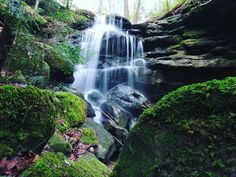 """Sam Calhoun on Instagram: """"Perhaps my favorite view of this off trail falls in Bankhead National Forest. #explore #getoutstayout  #optoutside #getoutide…"""""""