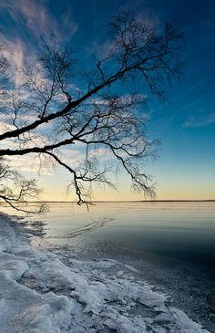 North shore of Clear Lake, Riding Mountain National Park, Manitoba, Canada