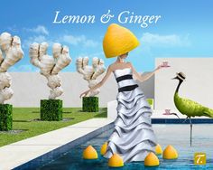 Lemon & Ginger - plunge with delight into the serenity of this new Classic tea by SPECIAL.T #specialt #teamoment #teatime