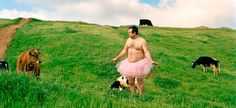 "watch out for that cow . . . (from ""The Tutu Project' for breast cancer awareness) Gotta love this guy"