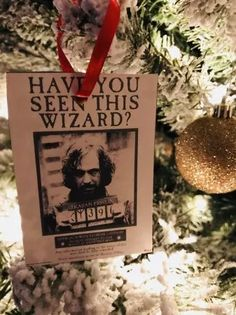 Harry Potter Christmas Decorations, Harry Potter Ornaments, Harry Potter Christmas Tree, Hogwarts Christmas, Harry Potter Halloween, Christmas Tree Themes, Christmas Crafts, Holiday Decor, Frog Ornaments