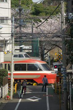 dokmi:    春の東京鉄道風景 小田急線 by Tokutomi Masaki on Flickr.