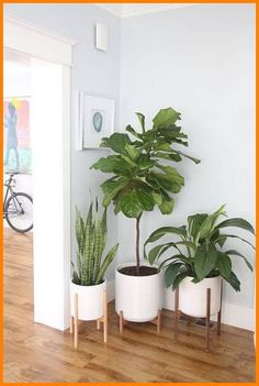 Large - Mid Century Modern Planter, Plant Stand with Modern .- Large – Mid Century Modern Planter, Plant Stand with Modern Plant Pot, Wood Stand – Ceramic Pot entryway house plants - Large Ceramic Planters, Ceramic Plant Pots, Modern Planters, Wood Planters, White Planters, Indoor Planters, Garden Modern, Indoor Cactus, Ceramic Flower Pots