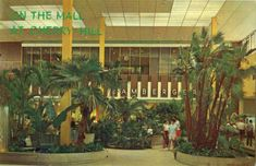 The trees and plants in the Cherry Hill Mall were most definitely the real thing. Description from mallsofamerica.blogspot.com. I searched for this on bing.com/images