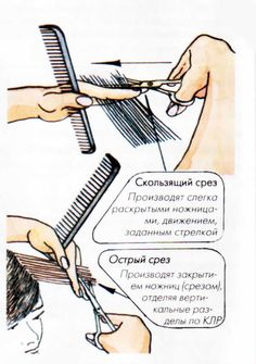 Все виды срезов в стрижках