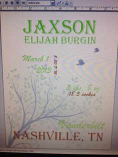 Birth announcement wall hanging