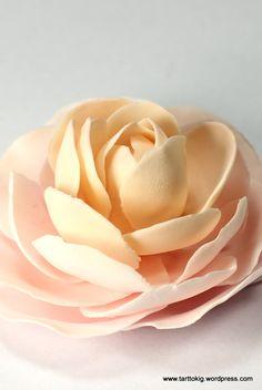 Tutorial – camellia