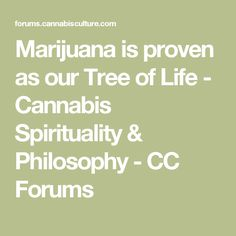 Marijuana is proven as our Tree of Life - Cannabis Spirituality & Philosophy - CC Forums
