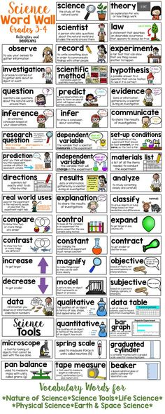 Science Word Wall for Grades 3-4                                                                                                                                                                                 More