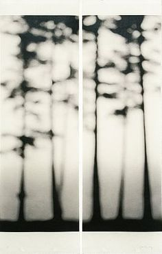 Jeri Eisenberg   Loon Lake, No. 4, 2007   Archival pigment ink on Japanese paper infused with encaustic medium  36 X 22 inches