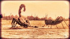 Scorpion Cricket Encounter - Sculptures In Anza Borrego Desert Photograph by Douglas MooreZart - Scorpion Cricket Encounter - Sculptures In Anza Borrego Desert Fine Art Prints and Posters for Sale #douglasmoorezart, #fineartphotography