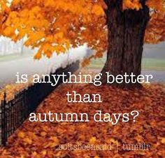 What I Love About Autumn  Simply Anchored