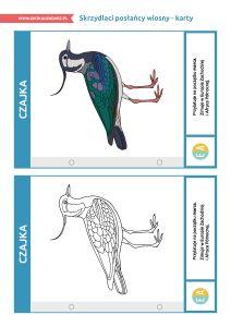 """Dzień Ptaków Wędrownych – pakiet edukacyjny: Karty """"Skrzydlaci posłańcy wiosny"""" Moose Art, Animals, Animales, Animaux, Animal, Animais"""