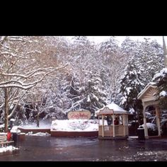 Snow in Dollywood, Tennessee