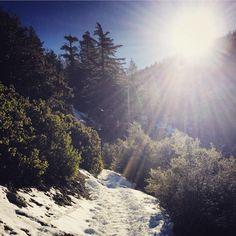 Hiking at Mt Baldy, CA