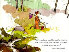 """""""We're so busy watching out for what's just ahead of us that we don't take time to enjoy where we are."""" Calvin and Hobbes Quote"""
