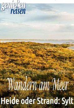 Heide oder Strand: Sylt ist landschaftliche Vielfalt am Meer #meer #sylt #watt #familienurlaub #wandern #reisenmitkindern #urlaubzuhause #deutschland #genießenundreisen #heide #nordsee #norddeutschland #schleswigholstein Travel Ideas, Travel Guide, Am Meer, Strand, Trekking, Mountain Biking, Saving Money, Germany, Budget