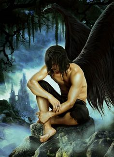 Fallen Angel by ~JdelNido on deviantART  Reminds me of Kalona in House of Night series