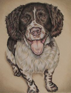 This listing is for a custom Colored pencil drawing of ONE PET in your choice of sizes. The sample image shown is a portrait commissioned as