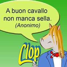 A buon #cavallo ...